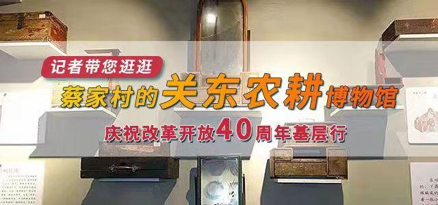 记者带您逛逛蔡家村的关东农耕博物馆--庆祝改革开放40周年基层行