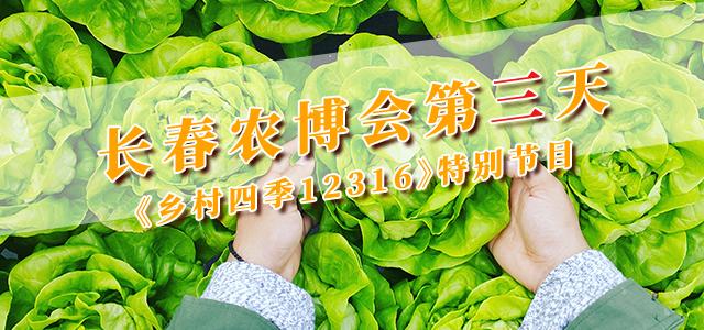 长春农博会第三天丨《乡村四季12316》特别节目